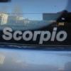 Страусиная ферма - последнее сообщение от Scorpio